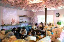 《トレンド調査》お花見は好きでも「混雑・花粉・トイレ・寒さ」に困惑:全国100ヶ所以上の【#インドア花見】が人気の理由とは